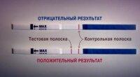 Определение беременности с помощью экспресс-тестов